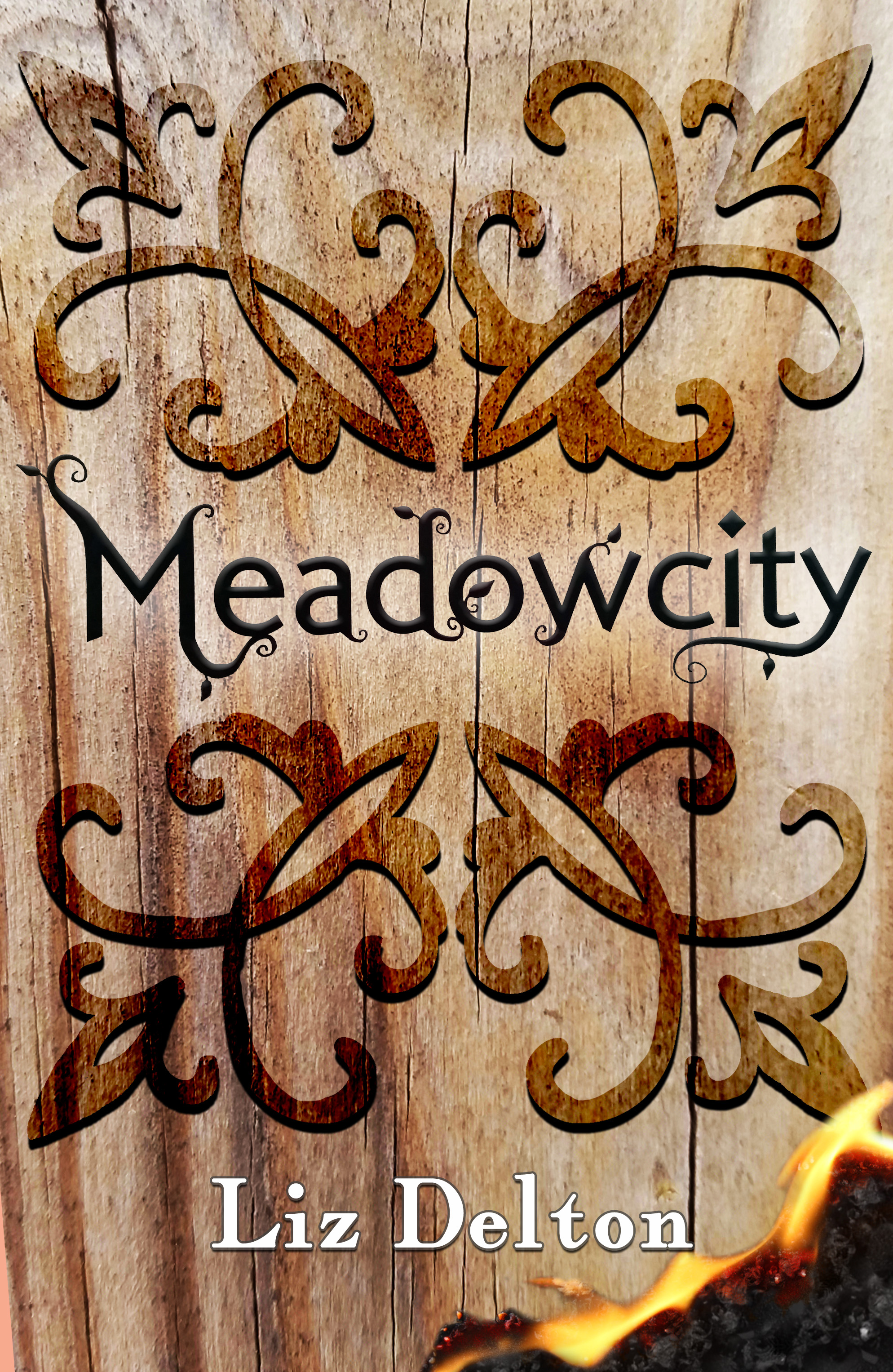 Meadowcity by Liz Delton